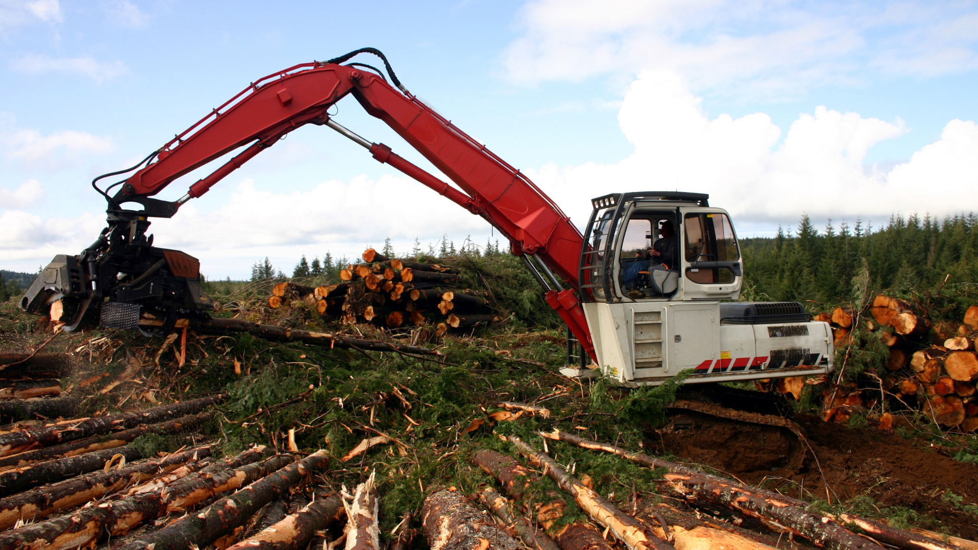 Harvester Head on Logging Machine